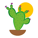 Oasi Cactus