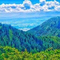 Ansh Dogra