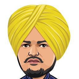 Punjabi Gamer photo