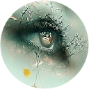 Image Google de Tigresse Caillere