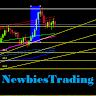 Newbies Trading