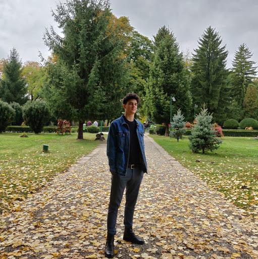 Andrei Iulian Harsia