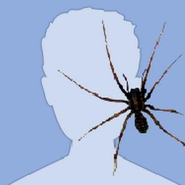 AD C's avatar