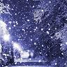 winter's melody's profile image