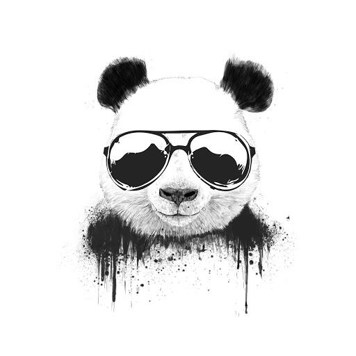 Evan Shi's avatar