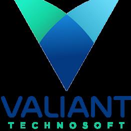 ValiantTechnosoft SEO