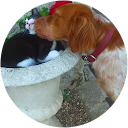 Freddy BARBIN