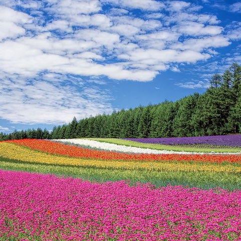 Rajeshwari Ganesan's avatar