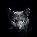 аватар профиля