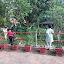 rakhi singh