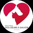Image Google de Des Coeurs à sauver