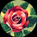 Lucia Ermurachi