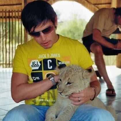 Sebastian The Lion