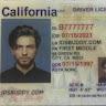 ids buddy profile pic