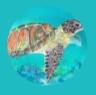 Fire McFire