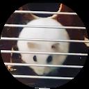 Hamster Snowys crazy life