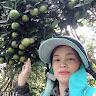 Camcaophong Hachung