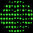 Gyan G.,WebMetric