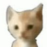 Anonymous_Darky