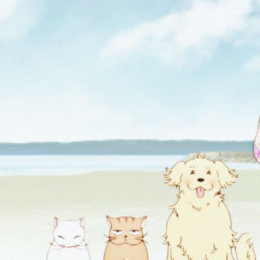 Angel Li's avatar