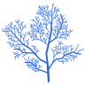 林さかな's icon