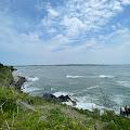 Maggie Webster's profile image