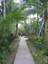 Photo: Yoga Retreat, Bahamas - walkway through ashram