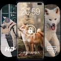 Akita Inu Wallpapers & Lock Screen icon