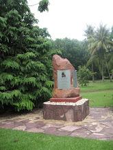 Photo: Botanická zahrada Darwin
