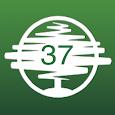 37 dias icon