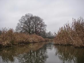 Photo: Widawą