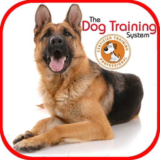 Dog Training - Apps on Google Play