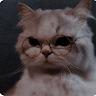 Kl Kl's profile picture