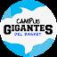 Campus Gigantes Alcalá (Owner)