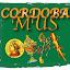 Mus Córdoba.