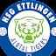 HSG Ettlingen (Owner)