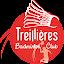 Treillieres Badminton (Owner)