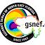 GSNEF JAX (Owner)