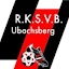 RKSVB Webmaster (Owner)