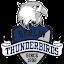 Berlin Thunderbirds e.V. (Owner)