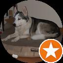 Ralph B.,AutoDir