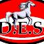 PonyClub DES (Owner)