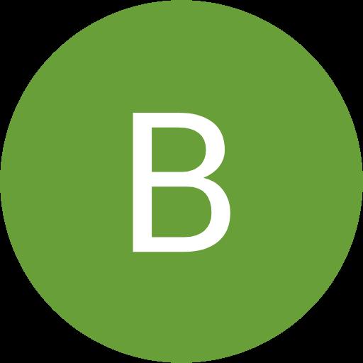 Bradley Brin