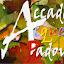 Accademia dell'Acquerello Padova (Owner)