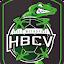 Lille-Métropole HBCV (Owner)
