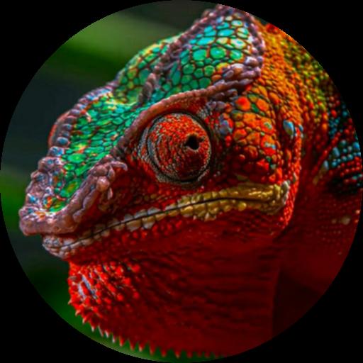 ai3 Image