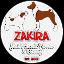 Zakira FCI Jack Russell Terrier & Basenji (Owner)