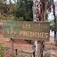 Fotos de l'escola Pinediques (Owner)