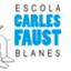 Carles Faust (Owner)