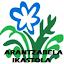 Arantzabela ikastola (Owner)